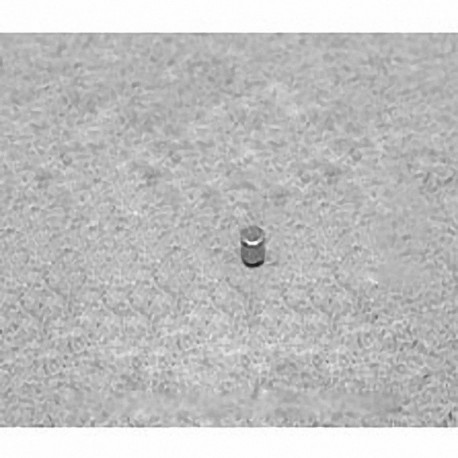 "D11 Neodymium Cylinder Magnet, 1/16"" dia. x 1/16"" thick"
