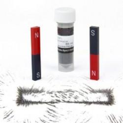 Educational Alnico Bar Magnets-Iron Filings Set